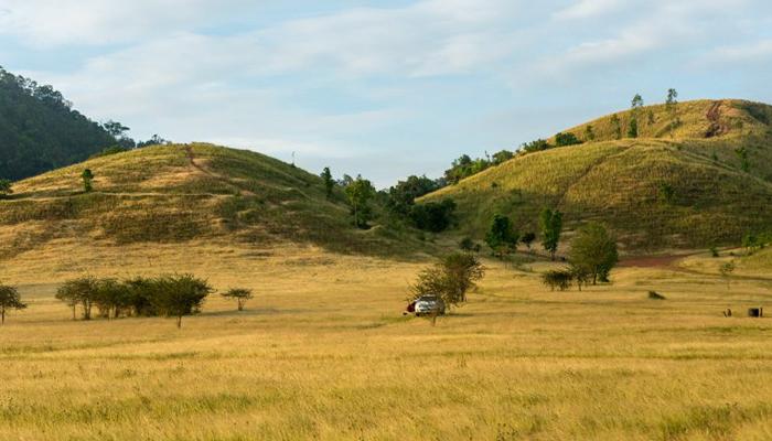 ที่กางเต็นท์ ภูเขาหญ้า ระนอง