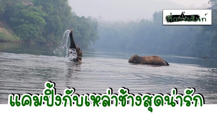 กางเต็นท์กาญจนบุรี